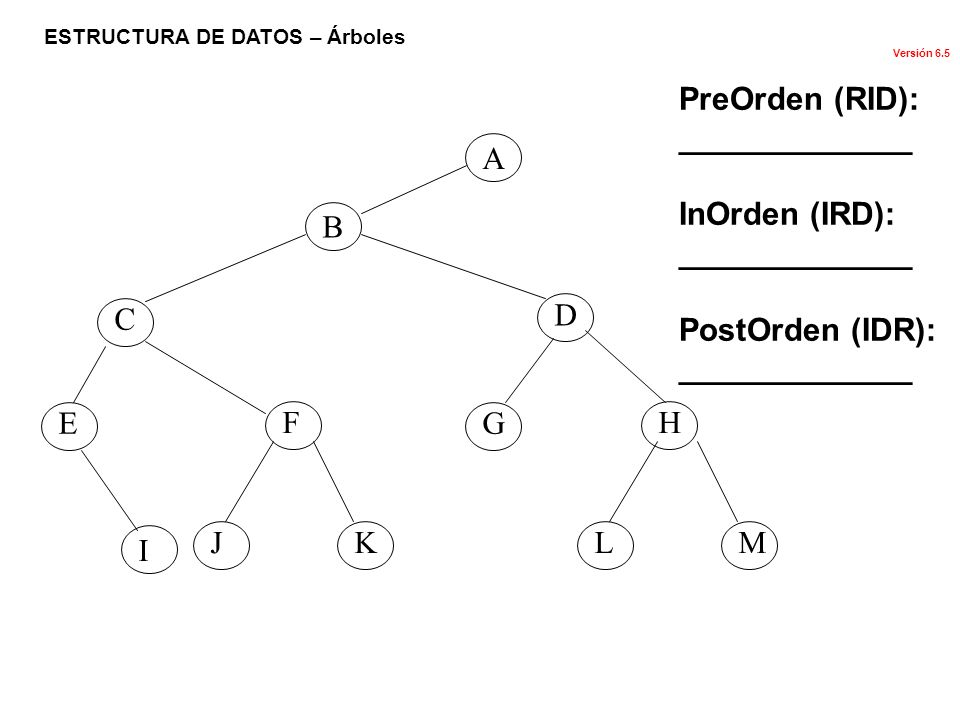 PreOrden (RID): _____________ InOrden (IRD): PostOrden (IDR): A B C D