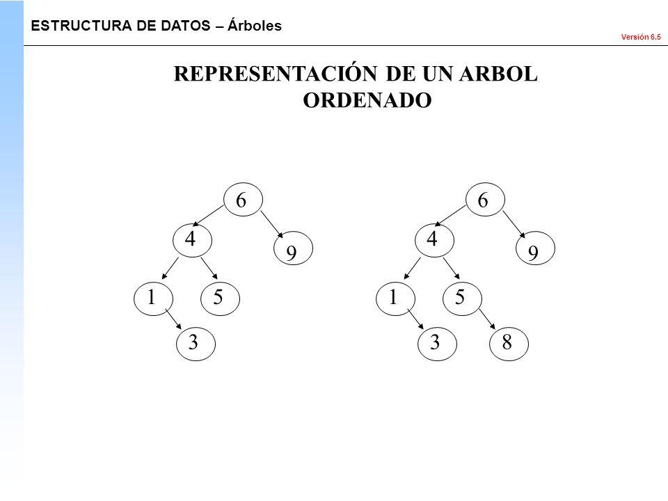 REPRESENTACIÓN DE UN ARBOL ORDENADO