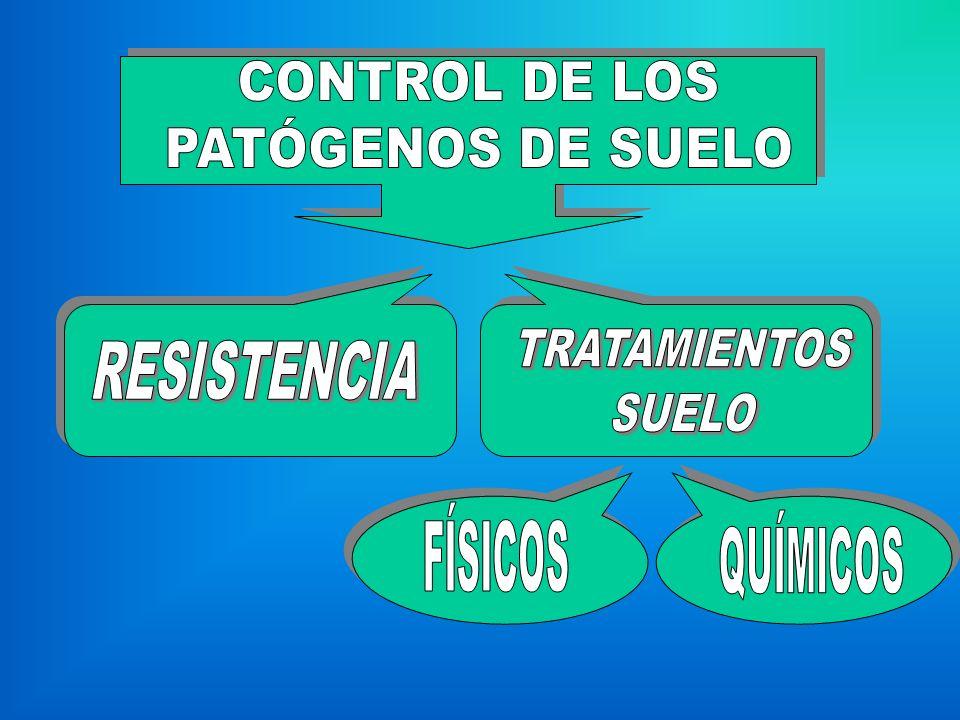 CONTROL DE LOS PATÓGENOS DE SUELO RESISTENCIA TRATAMIENTOS SUELO