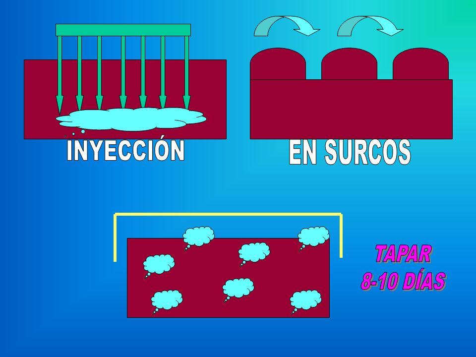 INYECCIÓN EN SURCOS TAPAR 8-10 DÍAS