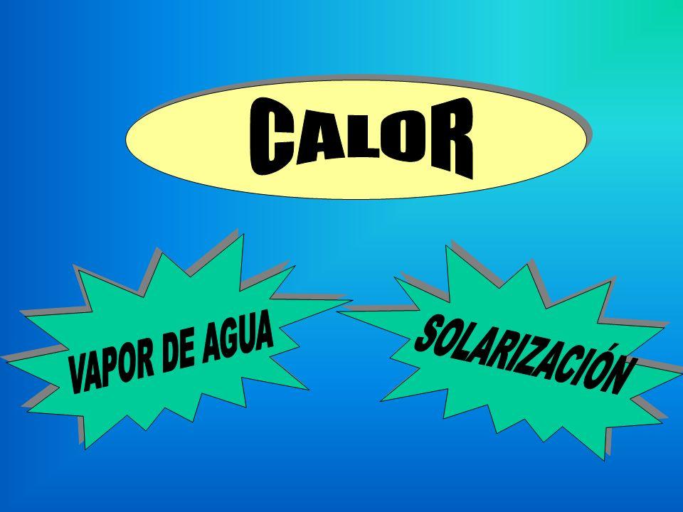 CALOR SOLARIZACIÓN VAPOR DE AGUA