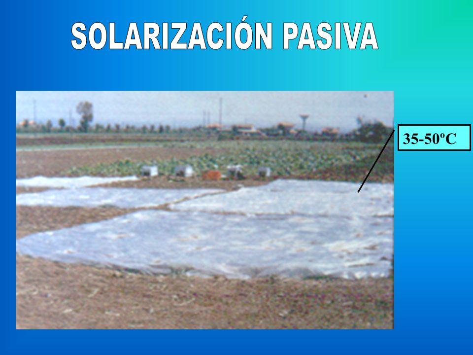 SOLARIZACIÓN PASIVA 35-50ºC