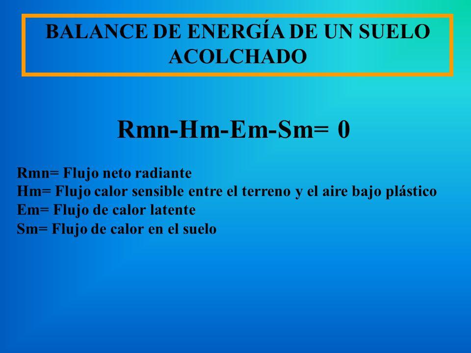 BALANCE DE ENERGÍA DE UN SUELO ACOLCHADO