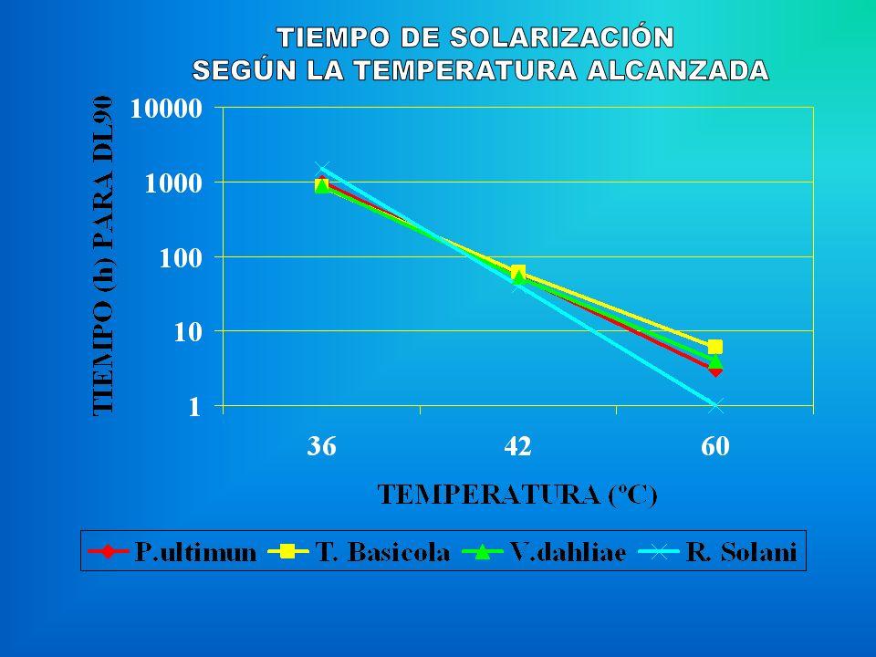 TIEMPO DE SOLARIZACIÓN SEGÚN LA TEMPERATURA ALCANZADA