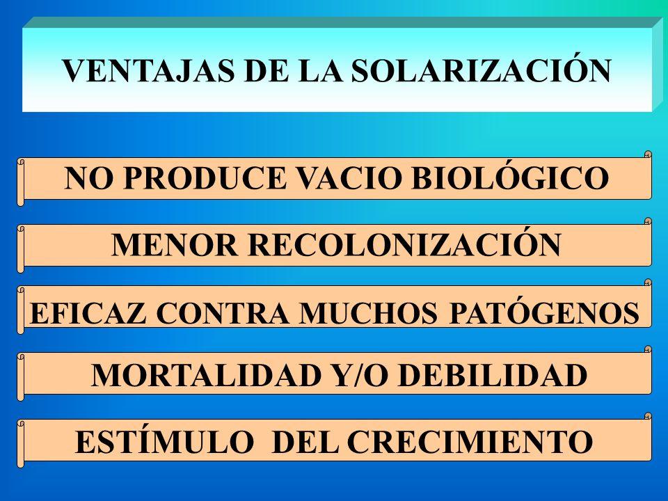 VENTAJAS DE LA SOLARIZACIÓN