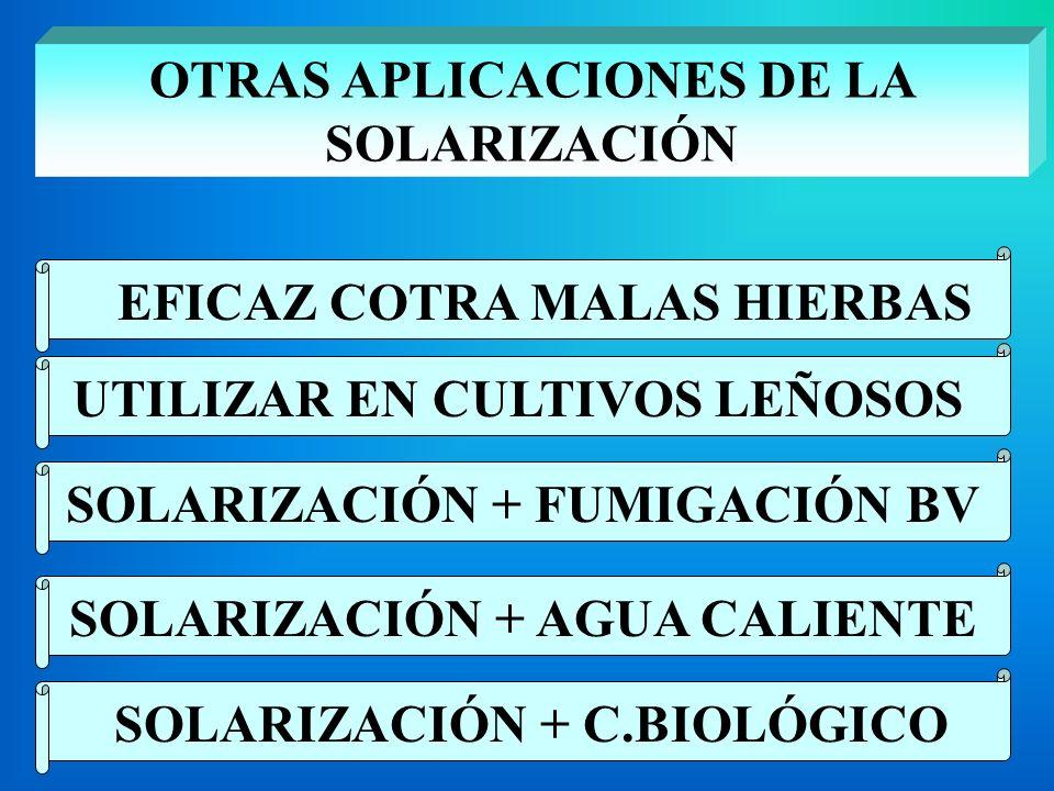 OTRAS APLICACIONES DE LA SOLARIZACIÓN