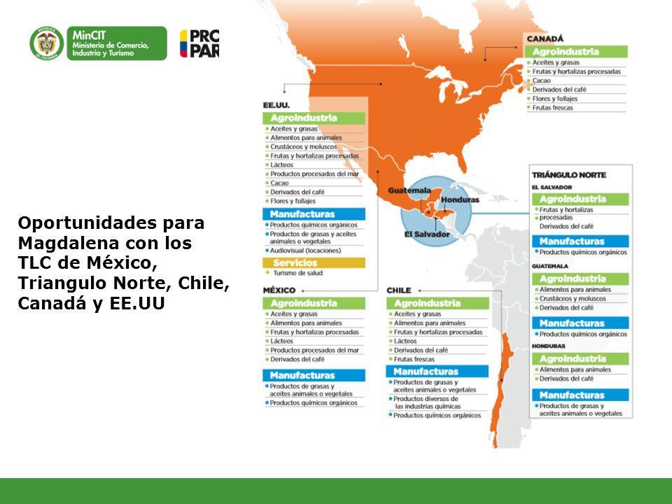 Oportunidades para Magdalena con los TLC de México, Triangulo Norte, Chile, Canadá y EE.UU