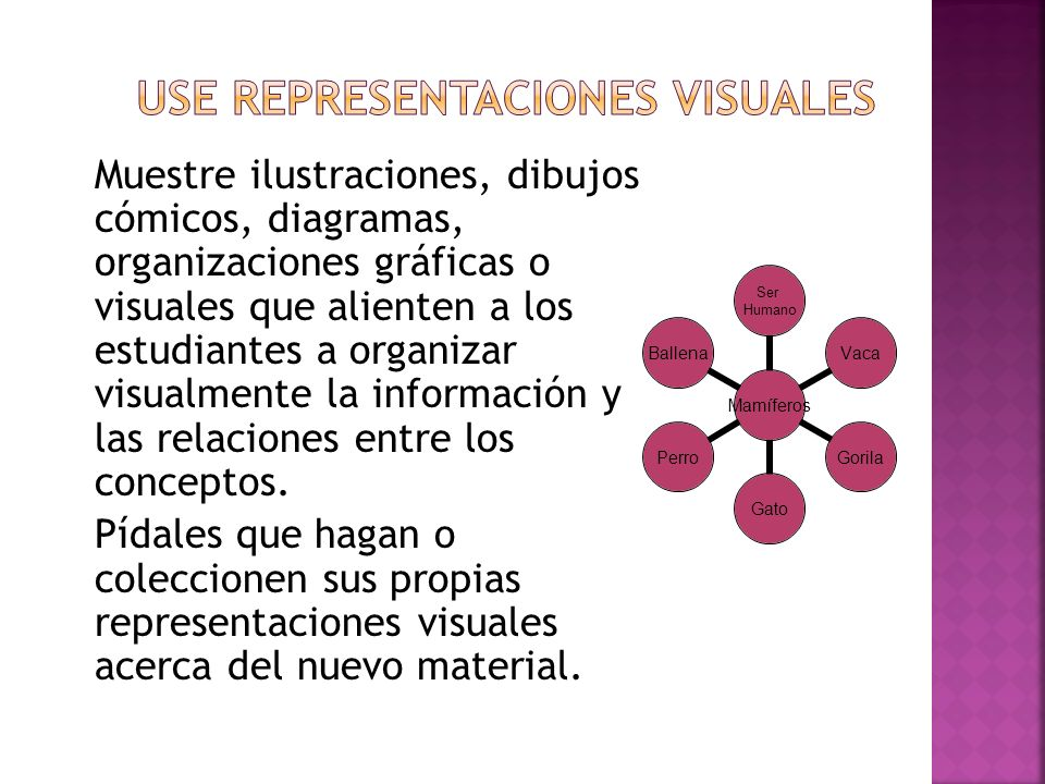 Use representaciones visuales