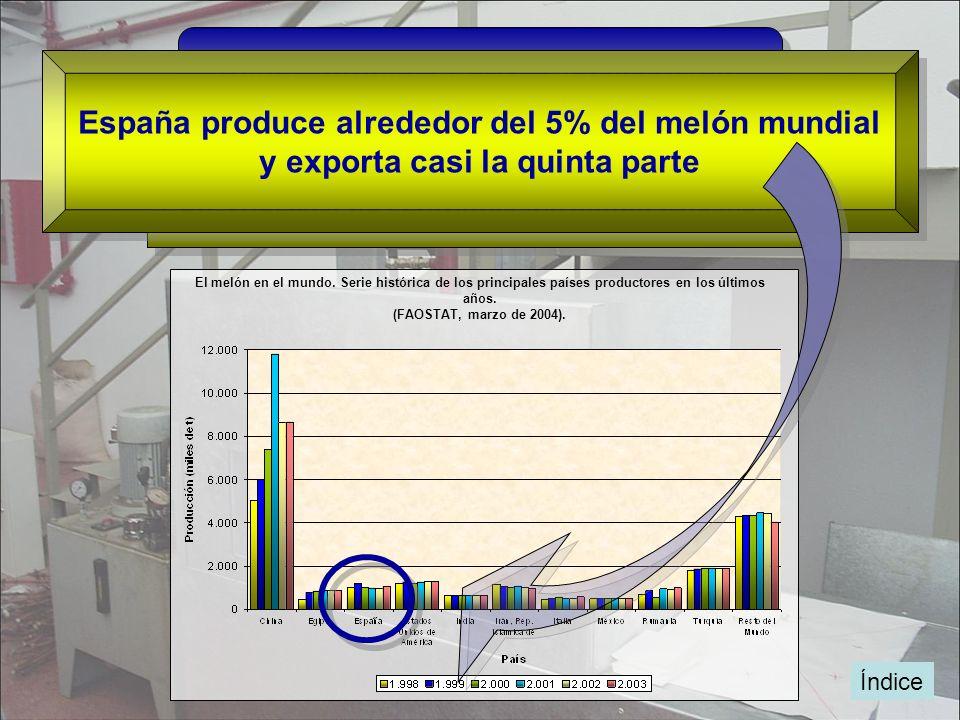 España produce alrededor del 5% del melón mundial