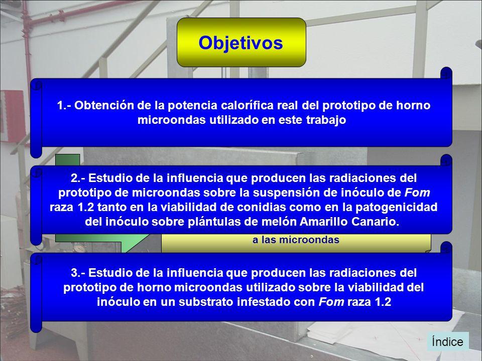 Objetivos 1.- Obtención de la potencia calorífica real del prototipo de horno. microondas utilizado en este trabajo.