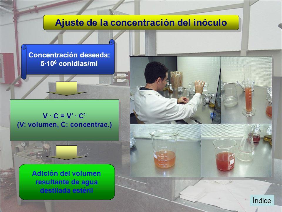 Ajuste de la concentración del inóculo
