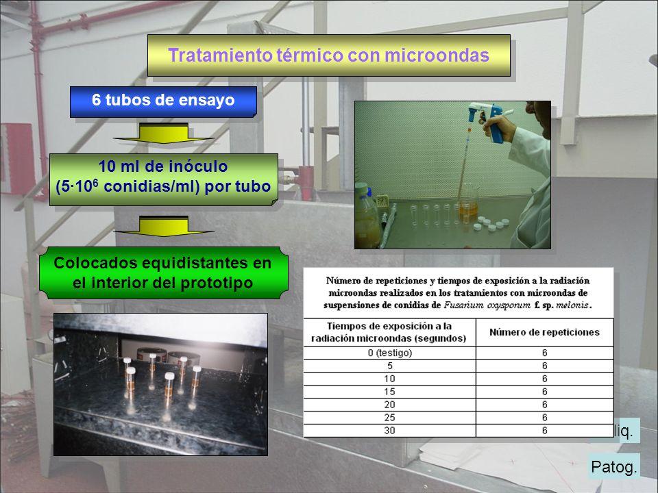 Tratamiento térmico con microondas