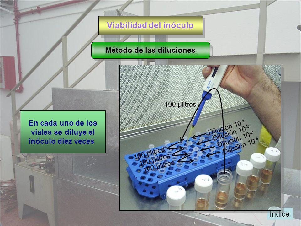 Viabilidad del inóculo Método de las diluciones