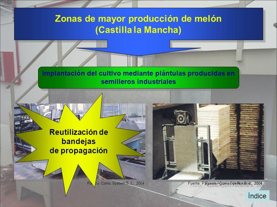 Zonas de mayor producción de melón (Castilla la Mancha)