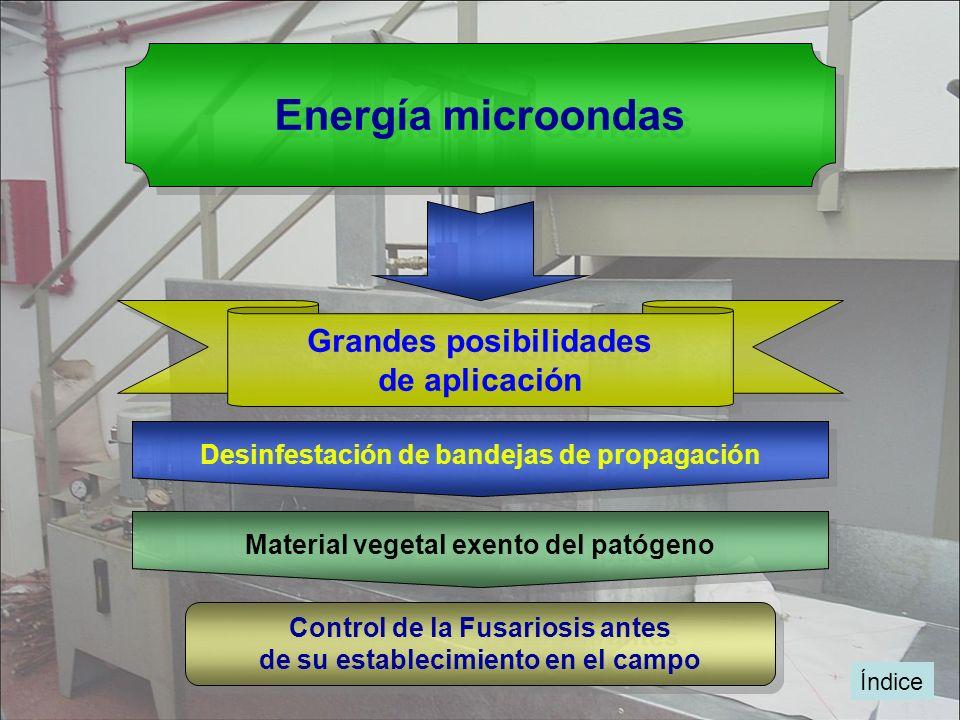 Energía microondas Grandes posibilidades de aplicación