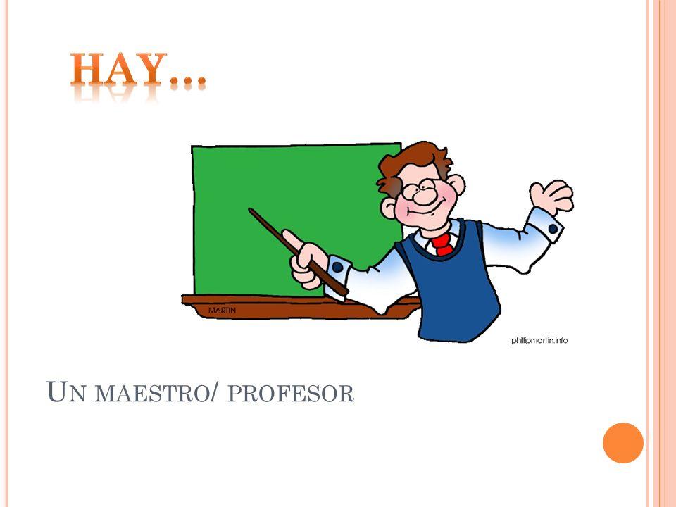 Hay… Un maestro/ profesor