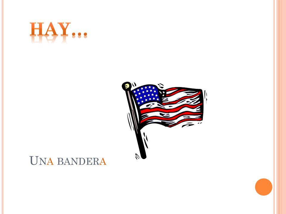 Hay… Una bandera