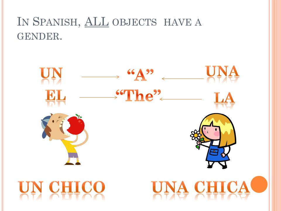 In Spanish, ALL objects have a gender.