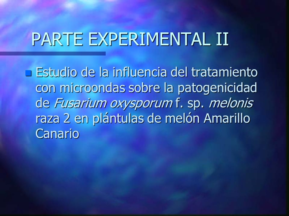 PARTE EXPERIMENTAL II