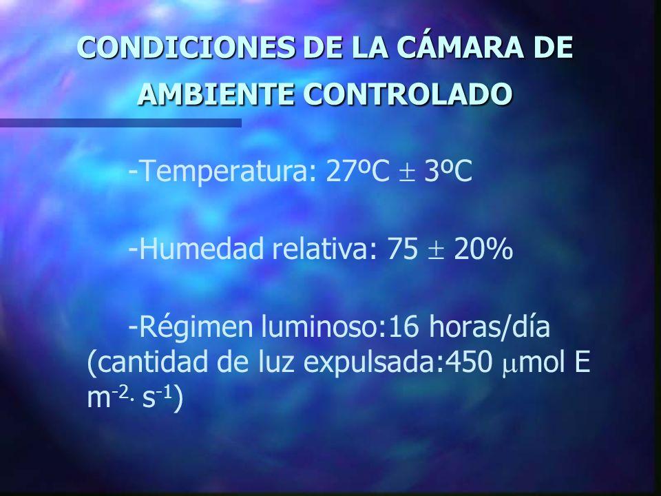 CONDICIONES DE LA CÁMARA DE AMBIENTE CONTROLADO