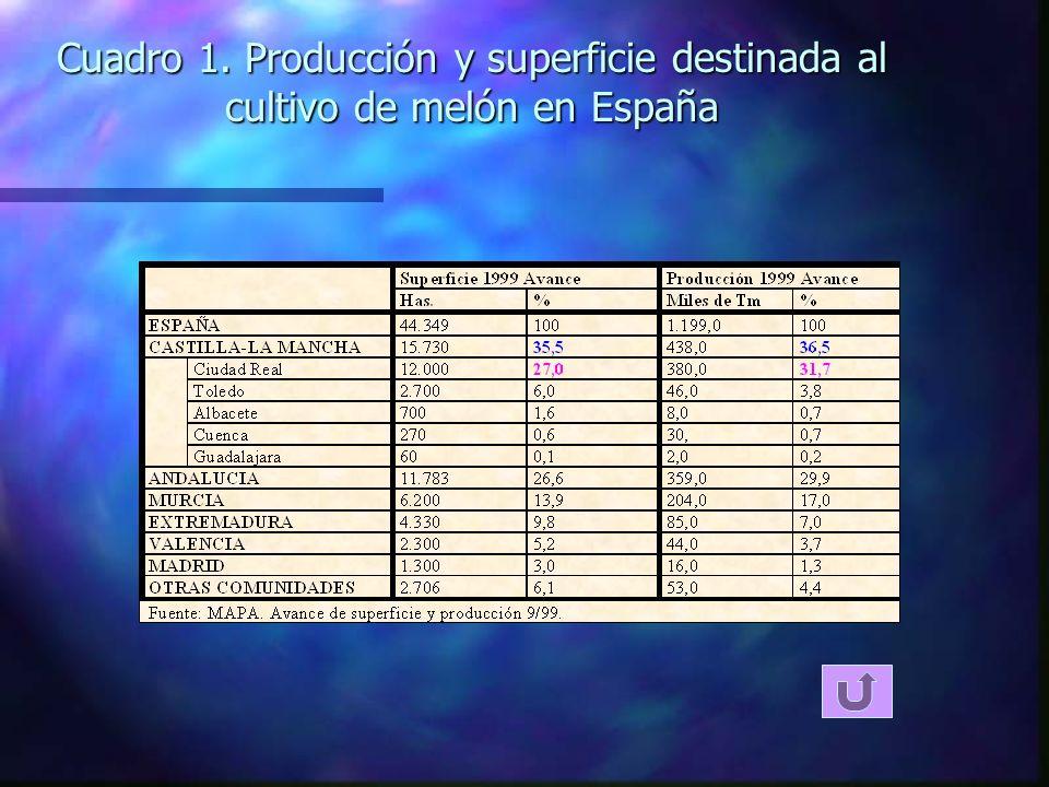 Cuadro 1. Producción y superficie destinada al cultivo de melón en España