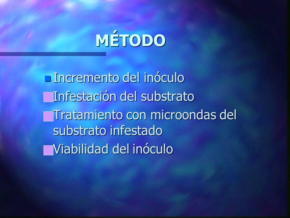 MÉTODO Incremento del inóculo Infestación del substrato