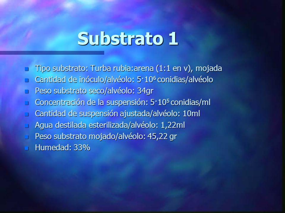 Substrato 1 Tipo substrato: Turba rubia:arena (1:1 en v), mojada