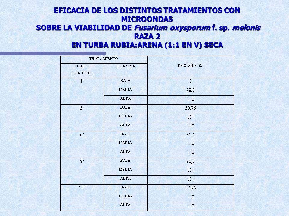 EFICACIA DE LOS DISTINTOS TRATAMIENTOS CON MICROONDAS SOBRE LA VIABILIDAD DE Fusarium oxysporum f.