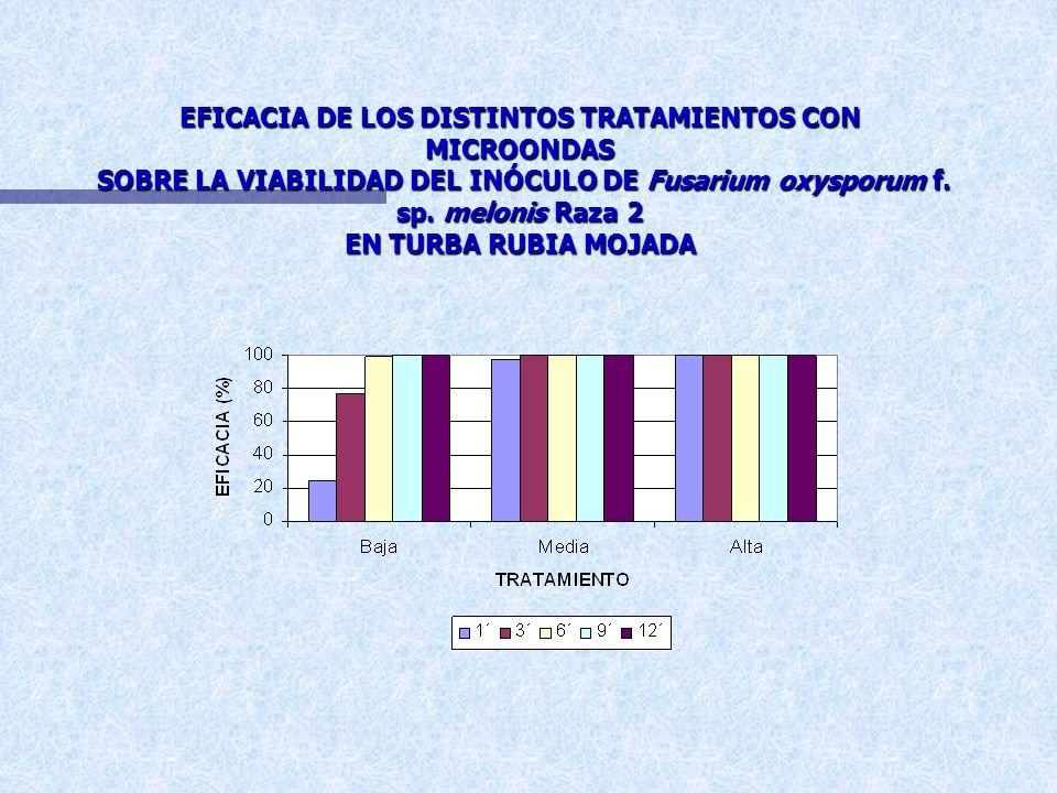 EFICACIA DE LOS DISTINTOS TRATAMIENTOS CON MICROONDAS SOBRE LA VIABILIDAD DEL INÓCULO DE Fusarium oxysporum f.