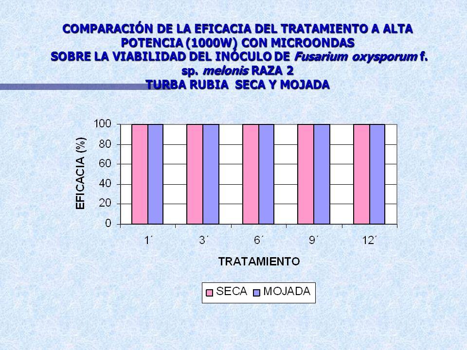 COMPARACIÓN DE LA EFICACIA DEL TRATAMIENTO A ALTA POTENCIA (1000W) CON MICROONDAS SOBRE LA VIABILIDAD DEL INÓCULO DE Fusarium oxysporum f.