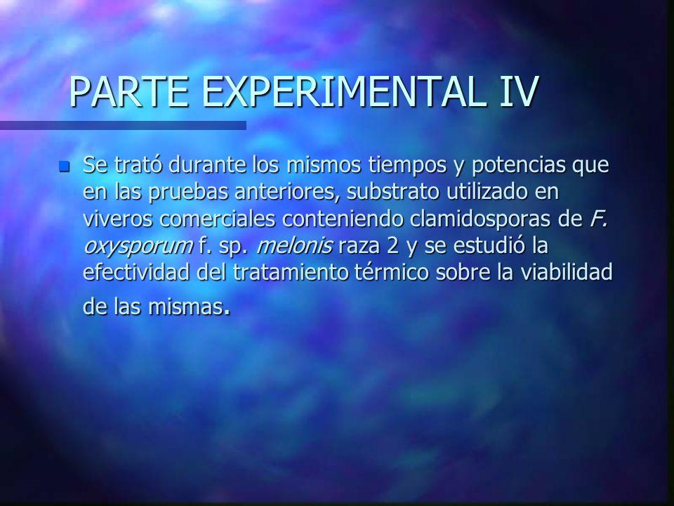 PARTE EXPERIMENTAL IV