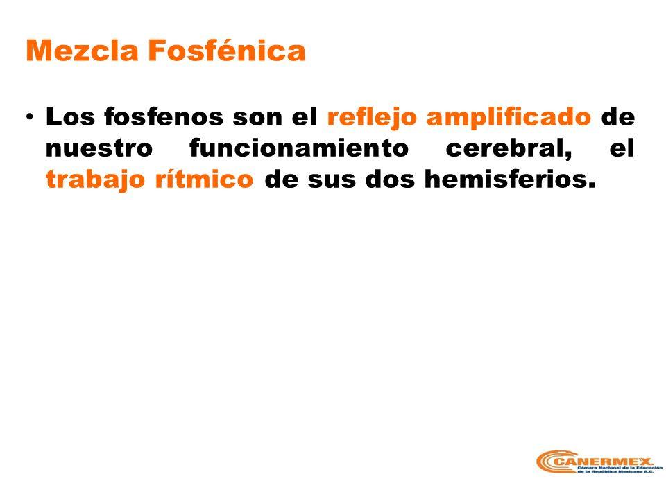 Mezcla Fosfénica Los fosfenos son el reflejo amplificado de nuestro funcionamiento cerebral, el trabajo rítmico de sus dos hemisferios.