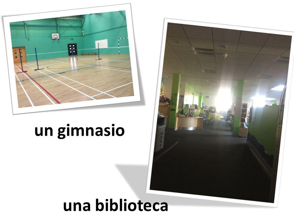 un gimnasio una biblioteca