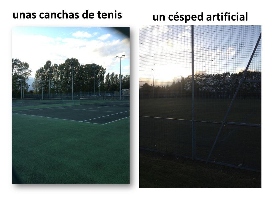 unas canchas de tenis un césped artificial