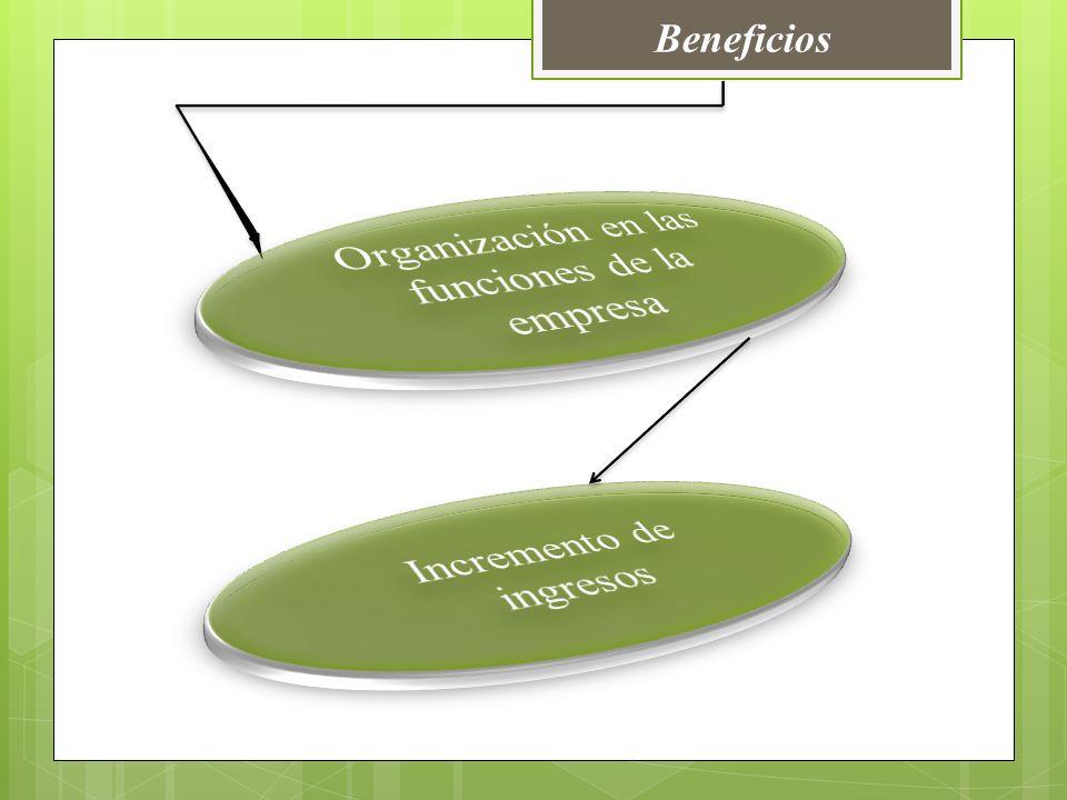 Organización en las funciones de la empresa