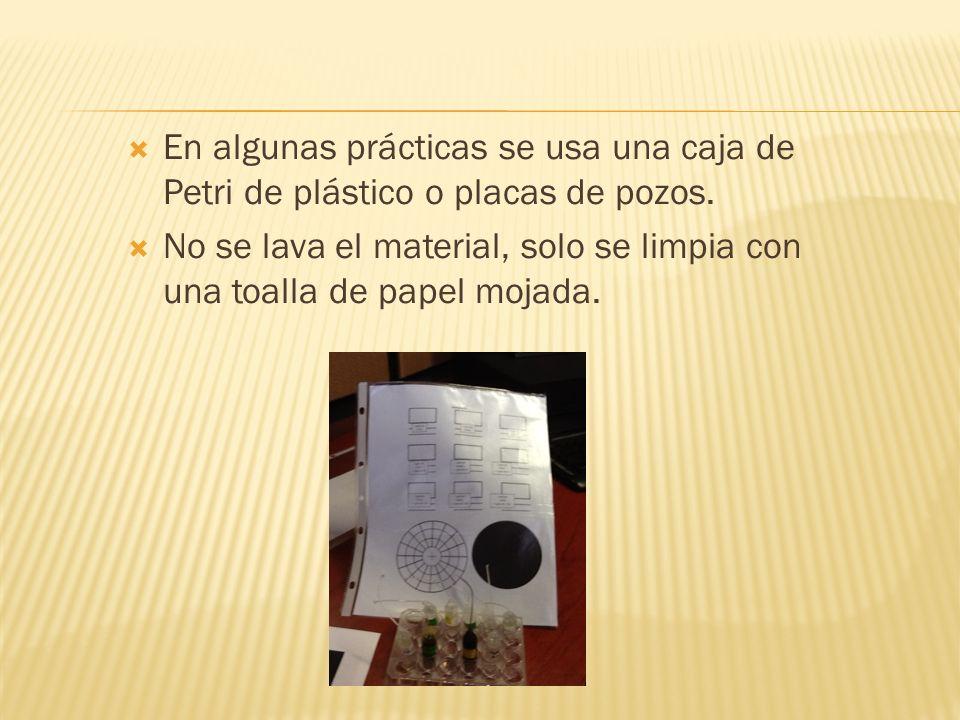 En algunas prácticas se usa una caja de Petri de plástico o placas de pozos.