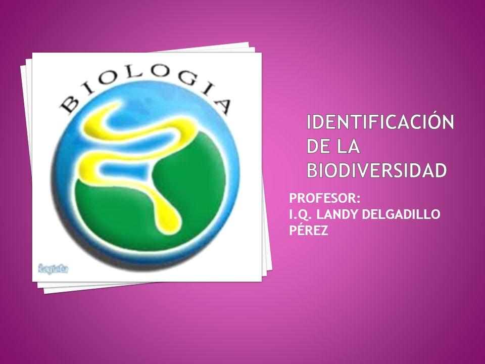 Identificación de la biodiversidad