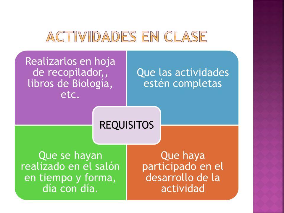 ACTIVIDADES EN CLASE REQUISITOS