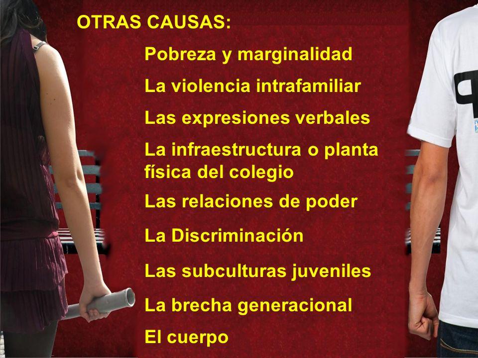 OTRAS CAUSAS: Pobreza y marginalidad. La violencia intrafamiliar. Las expresiones verbales. La infraestructura o planta física del colegio.