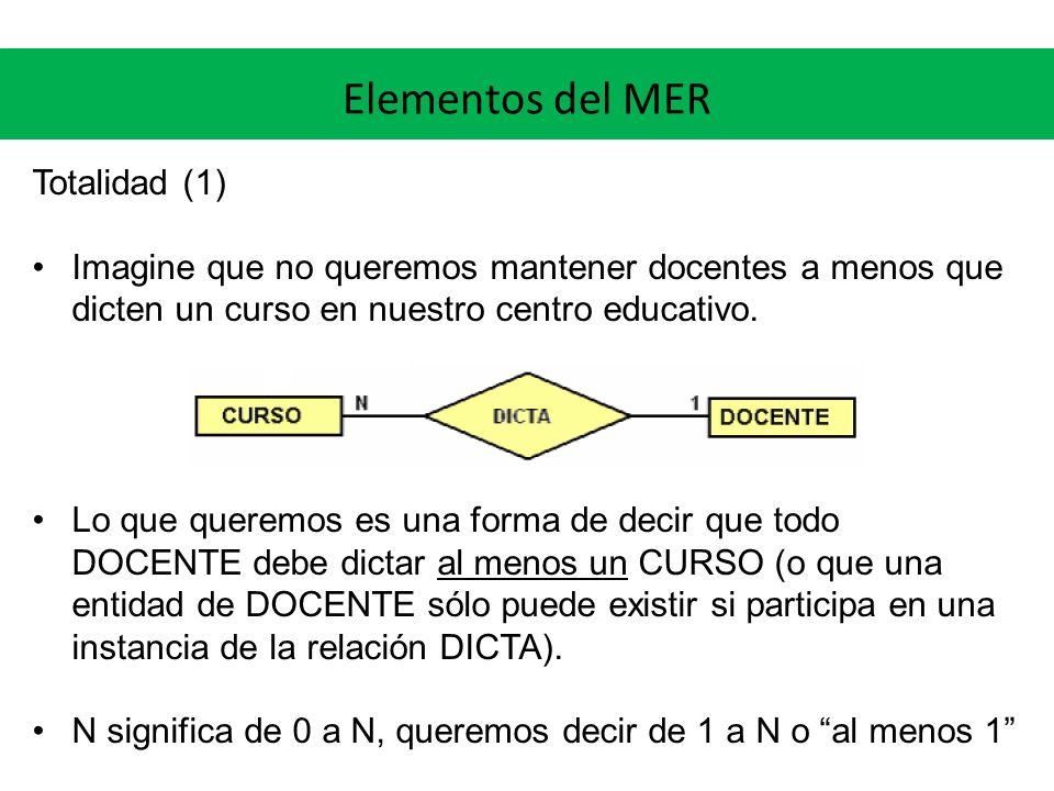Elementos del MER Totalidad (1)