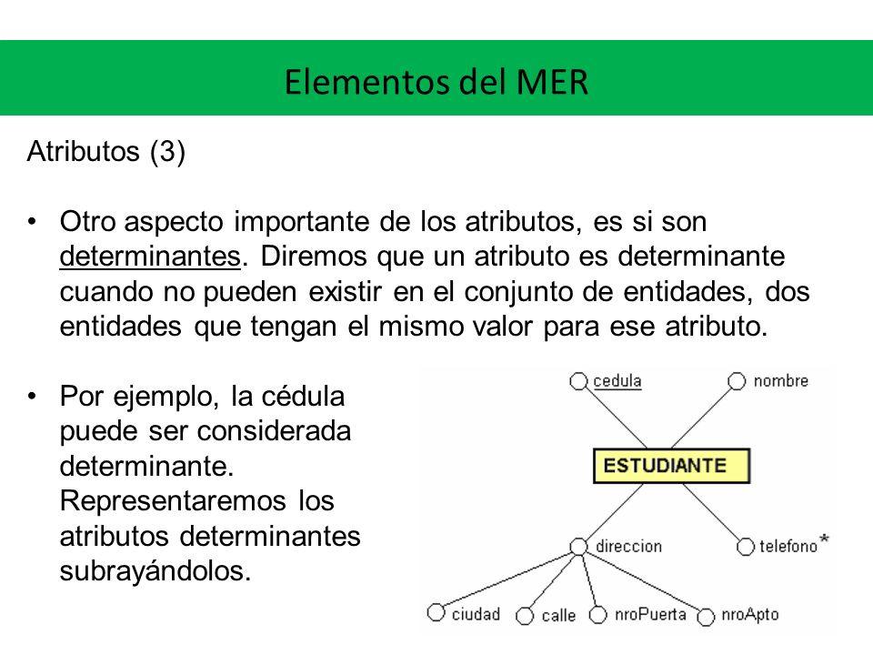 Elementos del MER Atributos (3)