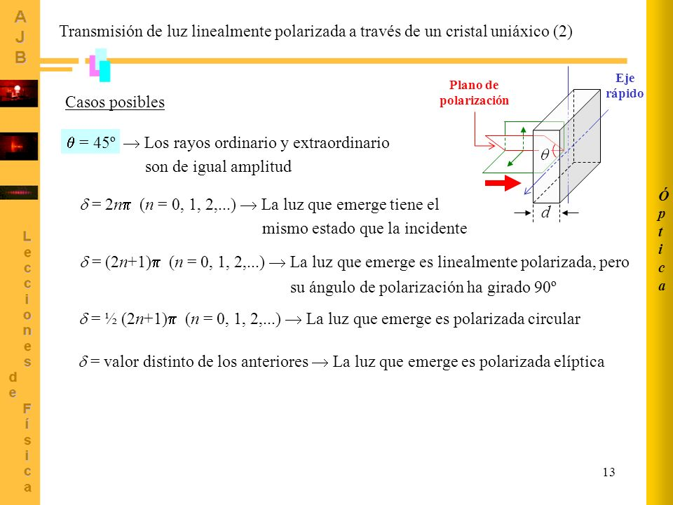  = 45º  Los rayos ordinario y extraordinario son de igual amplitud