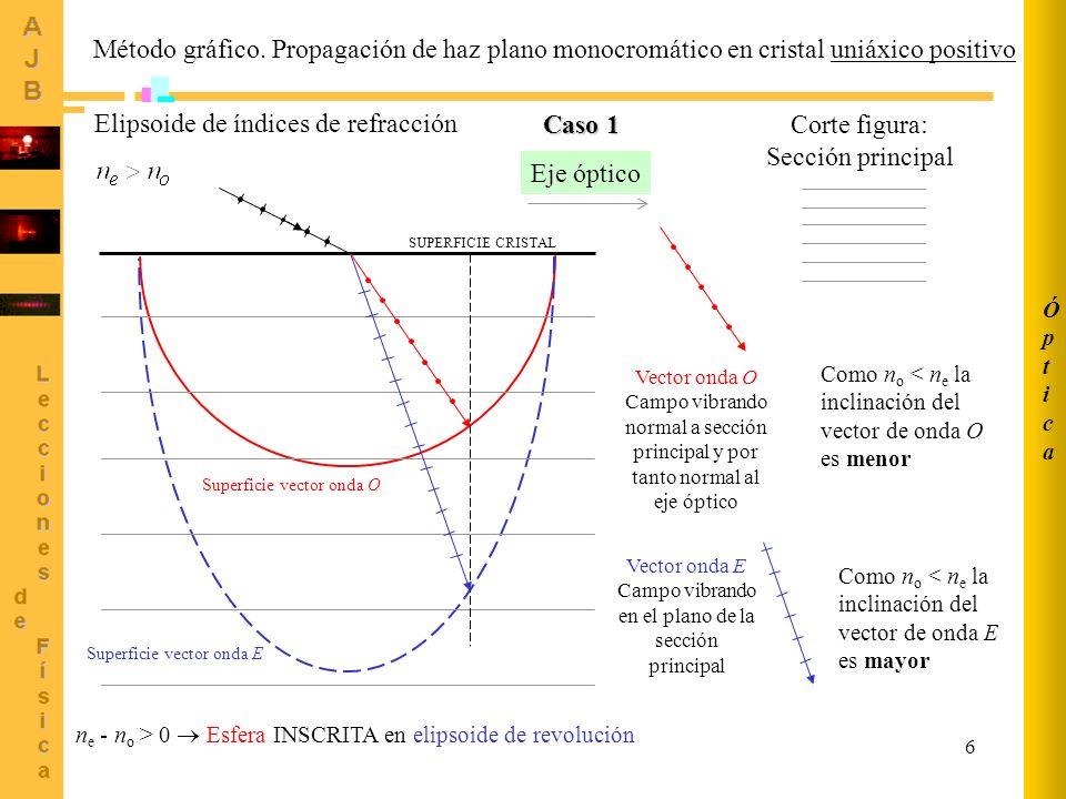 Vector onda E Campo vibrando en el plano de la sección principal