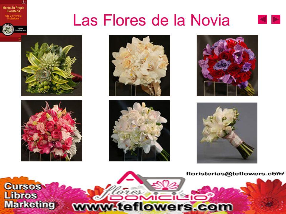 Las Flores de la Novia Lisianthus