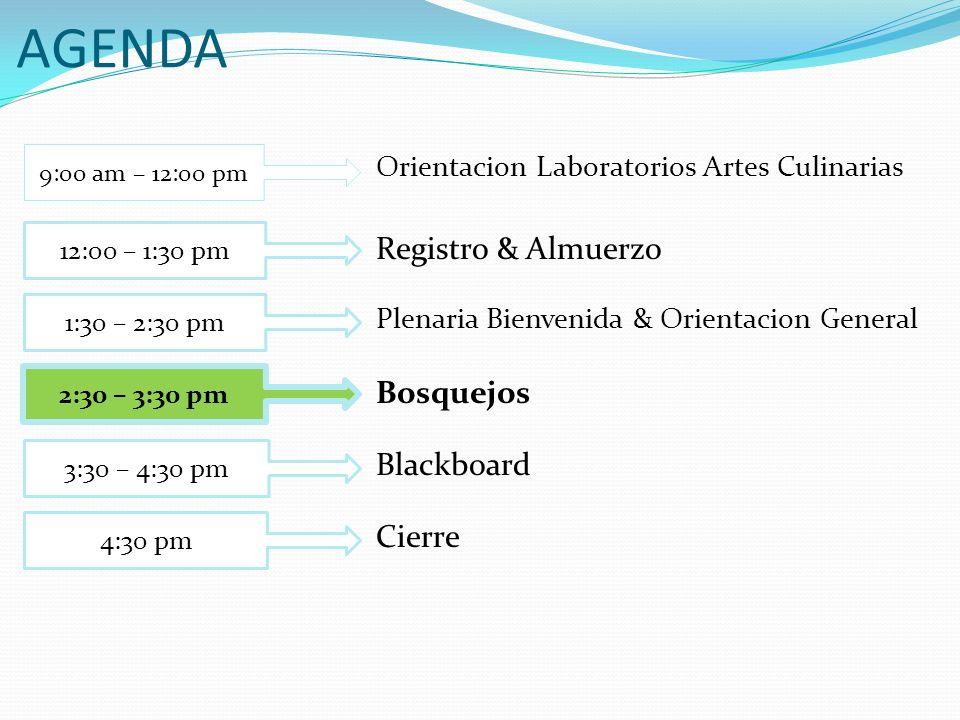 AGENDA Registro & Almuerzo Bosquejos Blackboard Cierre