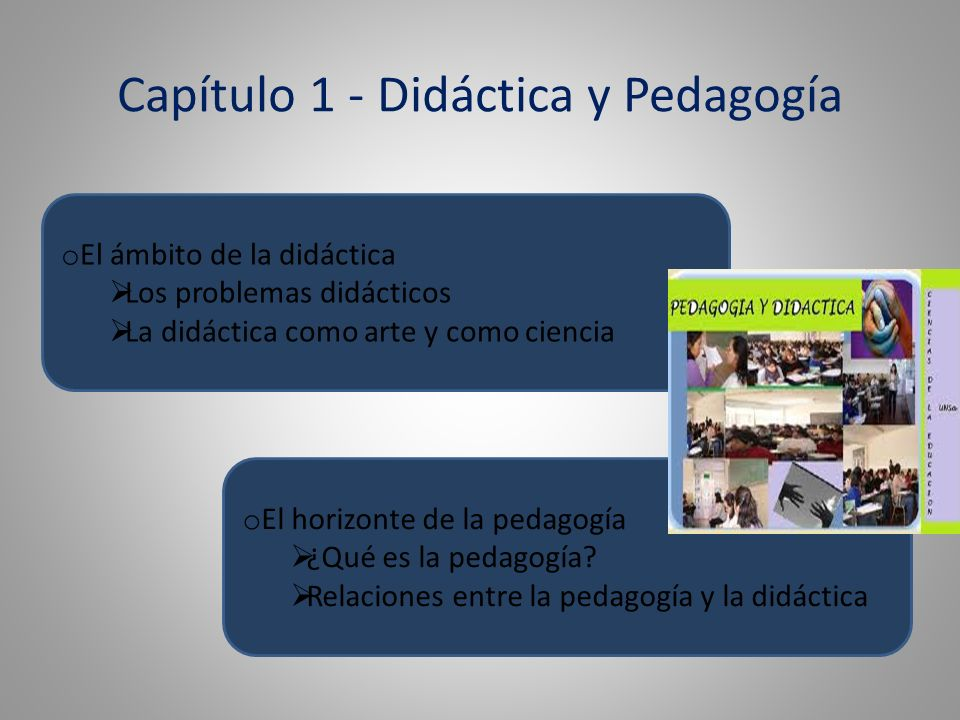 Capítulo 1 - Didáctica y Pedagogía