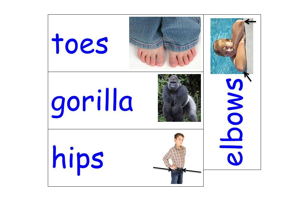 toes elbows gorilla hips