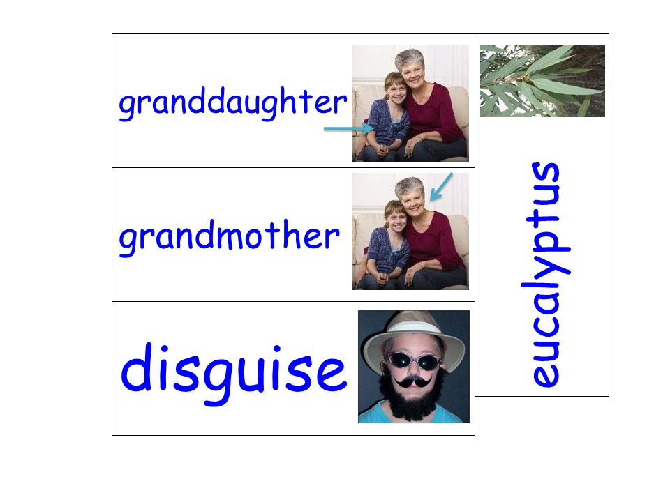 granddaughter eucalyptus grandmother disguise
