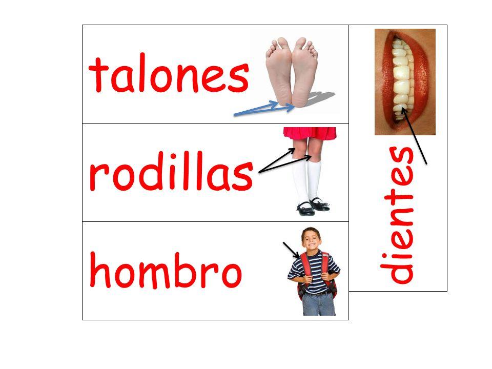 talones dientes rodillas hombro