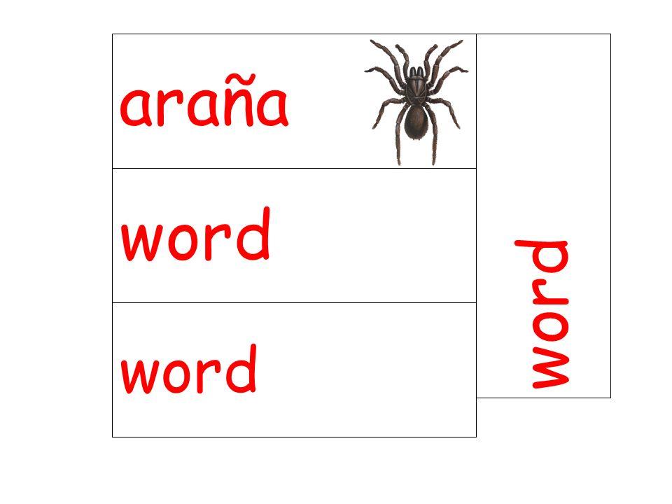 araña word word word